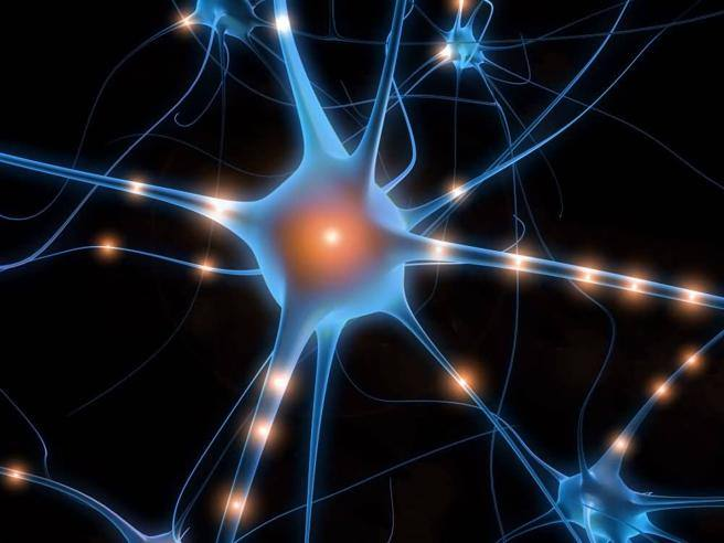 Sars-CoV-2 può colpire il cervello: rischio ictus anche nei giovani