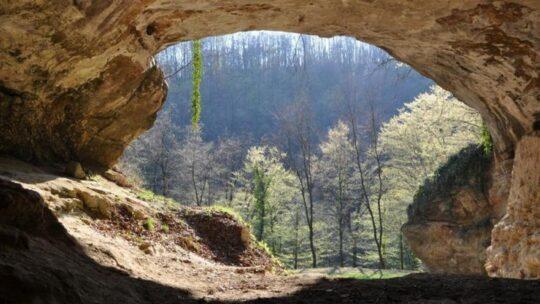 Covid: maledetto gene vecchio 50 mila anni